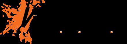 vattenball-logo